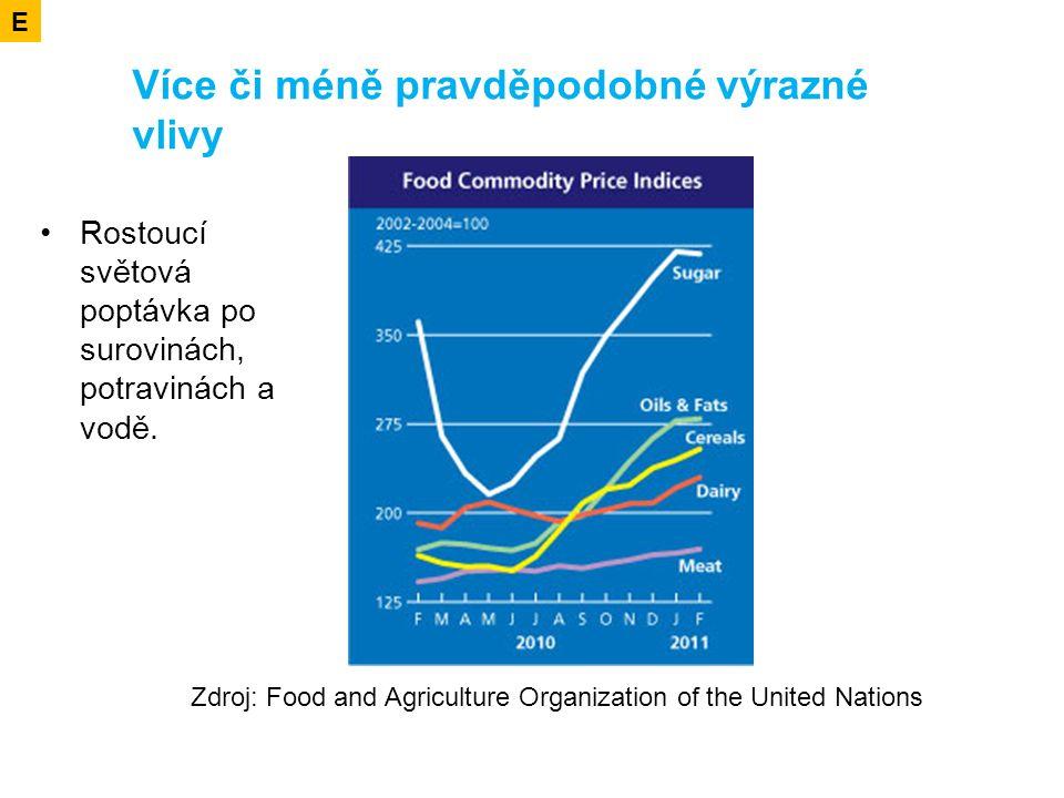 Více či méně pravděpodobné výrazné vlivy Rostoucí světová poptávka po surovinách, potravinách a vodě.