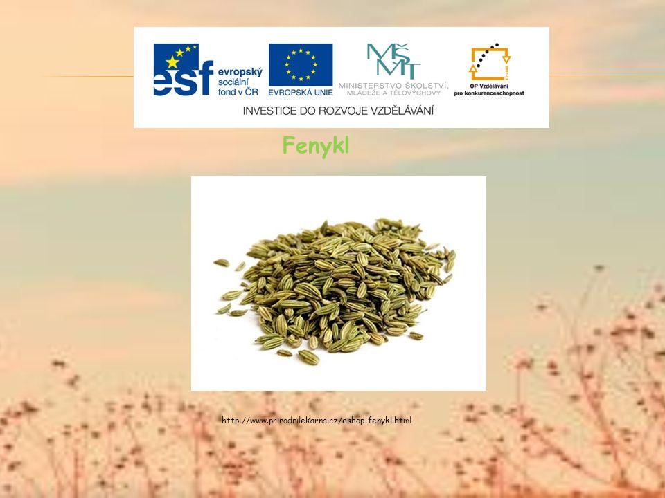 Fenykl http://www.prirodnilekarna.cz/eshop-fenykl.html