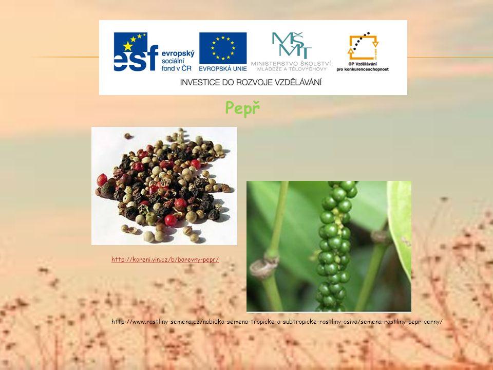 Pepř http://koreni.yin.cz/b/barevny-pepr/ http://www.rostliny-semena.cz/nabidka-semena-tropicke-a-subtropicke-rostliny-osiva/semena-rostliny-pepr-cerny/