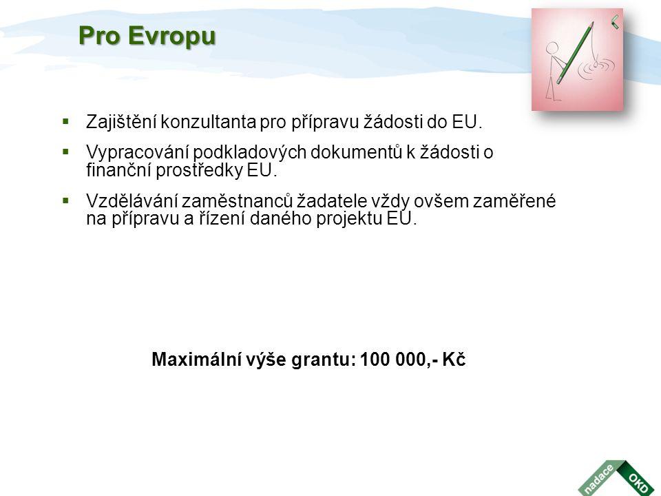  Zajištění konzultanta pro přípravu žádosti do EU.  Vypracování podkladových dokumentů k žádosti o finanční prostředky EU.  Vzdělávání zaměstnanců