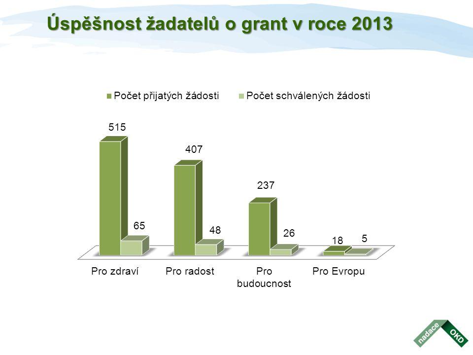 Úspěšnost žadatelů o grant v roce 2013