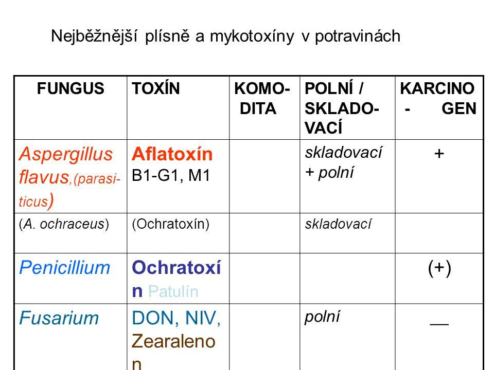 ABF1 genotoxický ( in vitro; in vivo) ABF1 carcinogenní u člověka - HBV+hepatocelulární carcinom (IARC - skupina 1) ( Afrika, Asie >80% případů ; Jižní Evropa?) B1+G1+M1 carcinogenní – lab zvířata B2 omezený důkaz  G2 nedostačující  