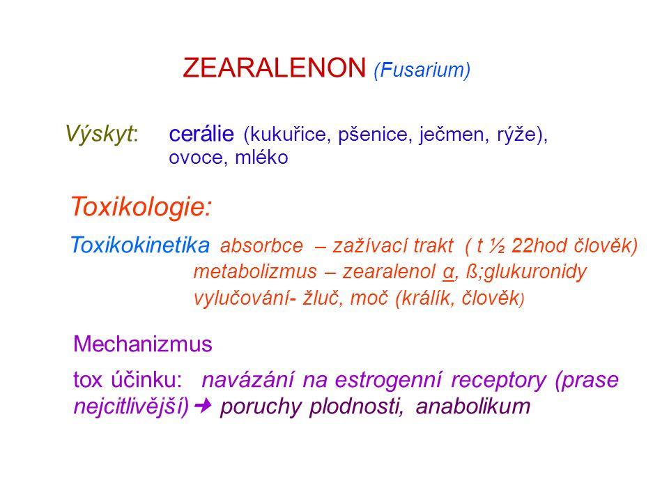 ZEARALENON (Fusarium) Výskyt: cerálie (kukuřice, pšenice, ječmen, rýže), ovoce, mléko Toxikologie: Toxikokinetika absorbce – zažívací trakt ( t ½ 22hod člověk) metabolizmus – zearalenol α, ß;glukuronidy vylučování- žluč, moč (králík, člověk ) Mechanizmus tox účinku: navázání na estrogenní receptory (prase nejcitlivější) poruchy plodnosti, anabolikum