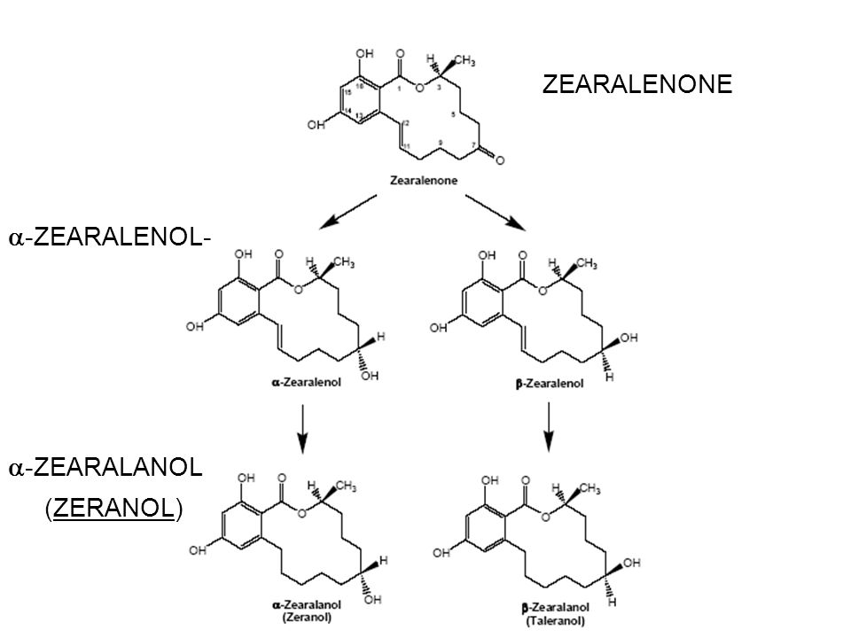 ZEARALENONE  -ZEARALENOL-  -ZEARALANOL (ZERANOL)