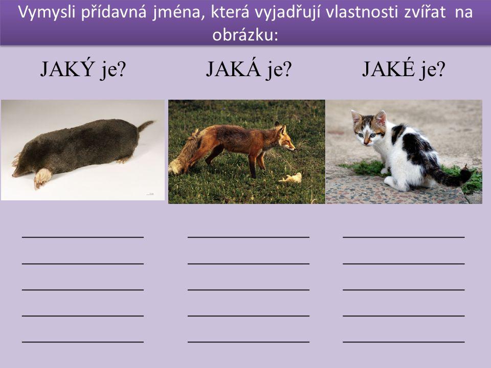 Vymysli přídavná jména, která vyjadřují vlastnosti zvířat na obrázku: JAKÝ je.