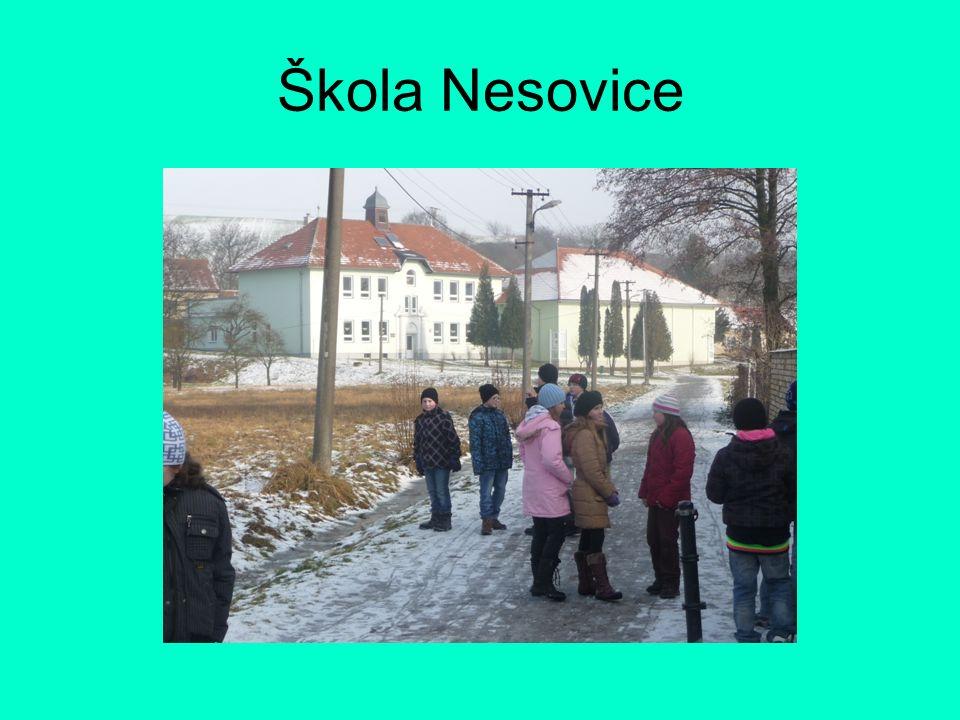 Škola Nesovice