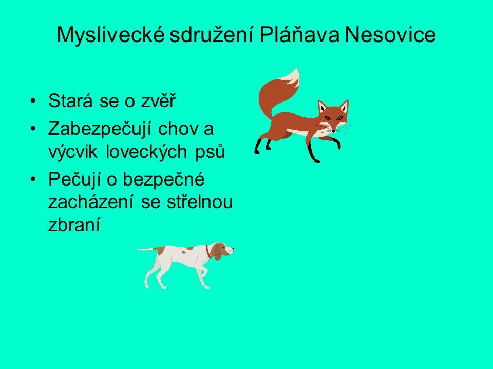 Myslivecké sdružení Pláňava Nesovice Stará se o zvěř Zabezpečují chov a výcvik loveckých psů Pečují o bezpečné zacházení se střelnou zbraní