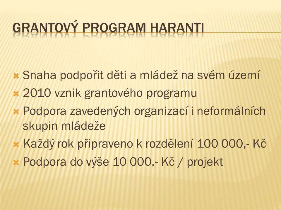  Snaha podpořit děti a mládež na svém území  2010 vznik grantového programu  Podpora zavedených organizací i neformálních skupin mládeže  Každý rok připraveno k rozdělení 100 000,- Kč  Podpora do výše 10 000,- Kč / projekt