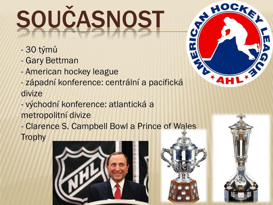 - 30 týmů - Gary Bettman - American hockey league - západní konference: centrální a pacifická divize - východní konference: atlantická a metropolitní divize - Clarence S.