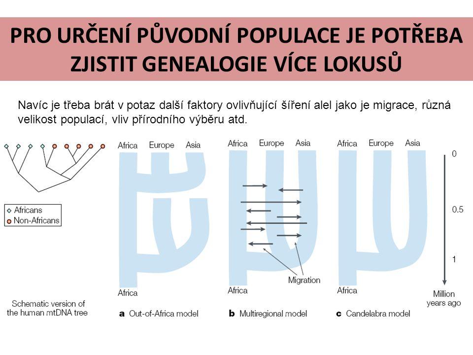 PRO URČENÍ PŮVODNÍ POPULACE JE POTŘEBA ZJISTIT GENEALOGIE VÍCE LOKUSŮ Navíc je třeba brát v potaz další faktory ovlivňující šíření alel jako je migrace, různá velikost populací, vliv přírodního výběru atd.