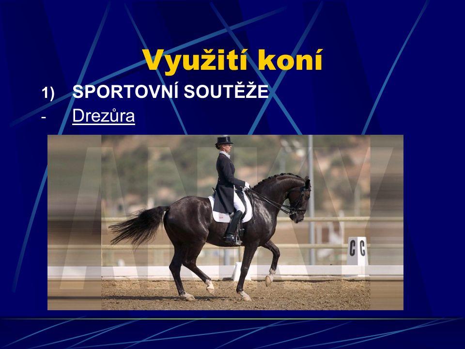 Využití koní 1) SPORTOVNÍ SOUTĚŽE - Drezůra