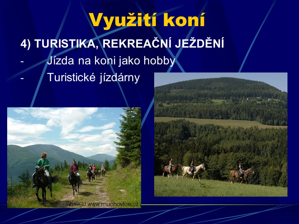 Využití koní 4) TURISTIKA, REKREAČNÍ JEŽDĚNÍ - Jízda na koni jako hobby - Turistické jízdárny