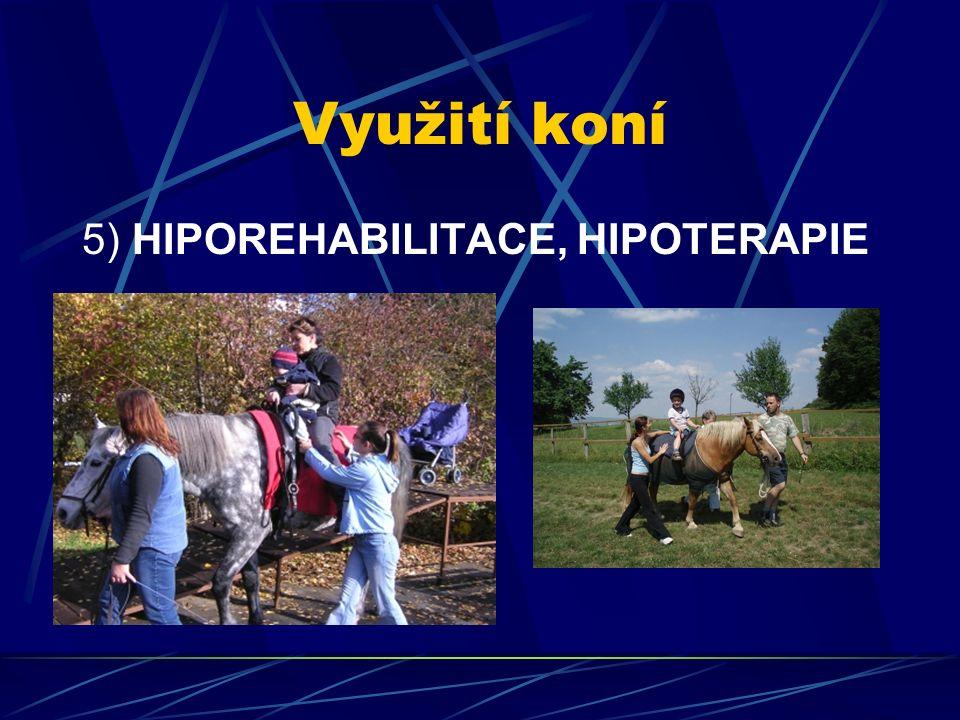 Využití koní 5) HIPOREHABILITACE, HIPOTERAPIE