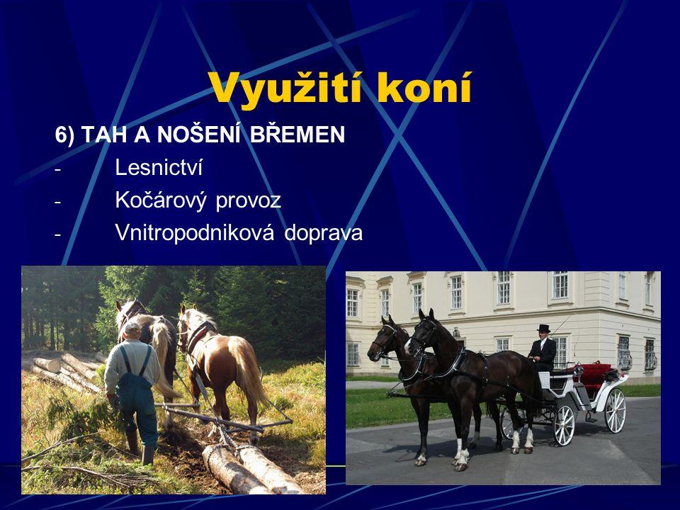 Využití koní 6) TAH A NOŠENÍ BŘEMEN - Lesnictví - Kočárový provoz - Vnitropodniková doprava