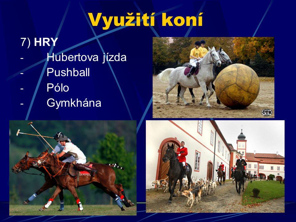 Využití koní 7) HRY - Hubertova jízda - Pushball - Pólo - Gymkhána