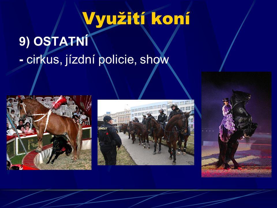 Využití koní 9) OSTATNÍ - cirkus, jízdní policie, show