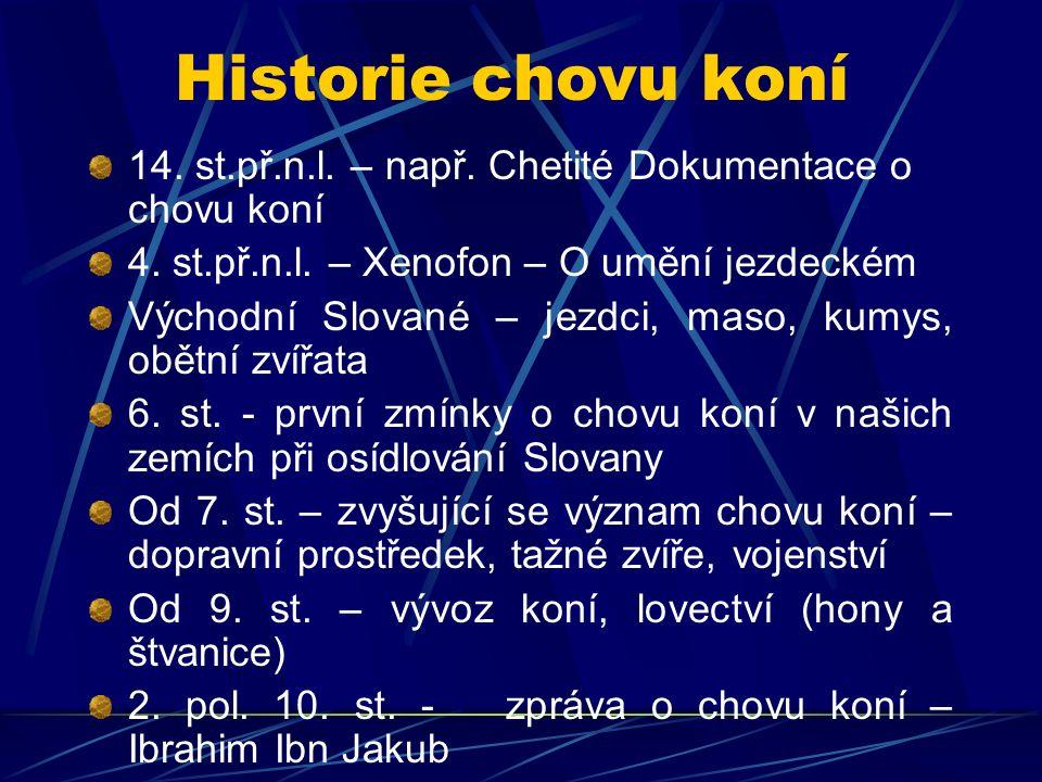 Historie chovu koní 14. st.př.n.l. – např. Chetité Dokumentace o chovu koní 4. st.př.n.l. – Xenofon – O umění jezdeckém Východní Slované – jezdci, mas