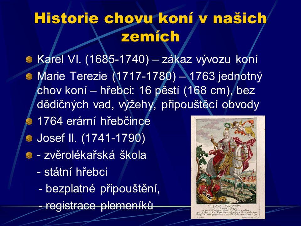 Historie chovu koní v našich zemích Karel VI.