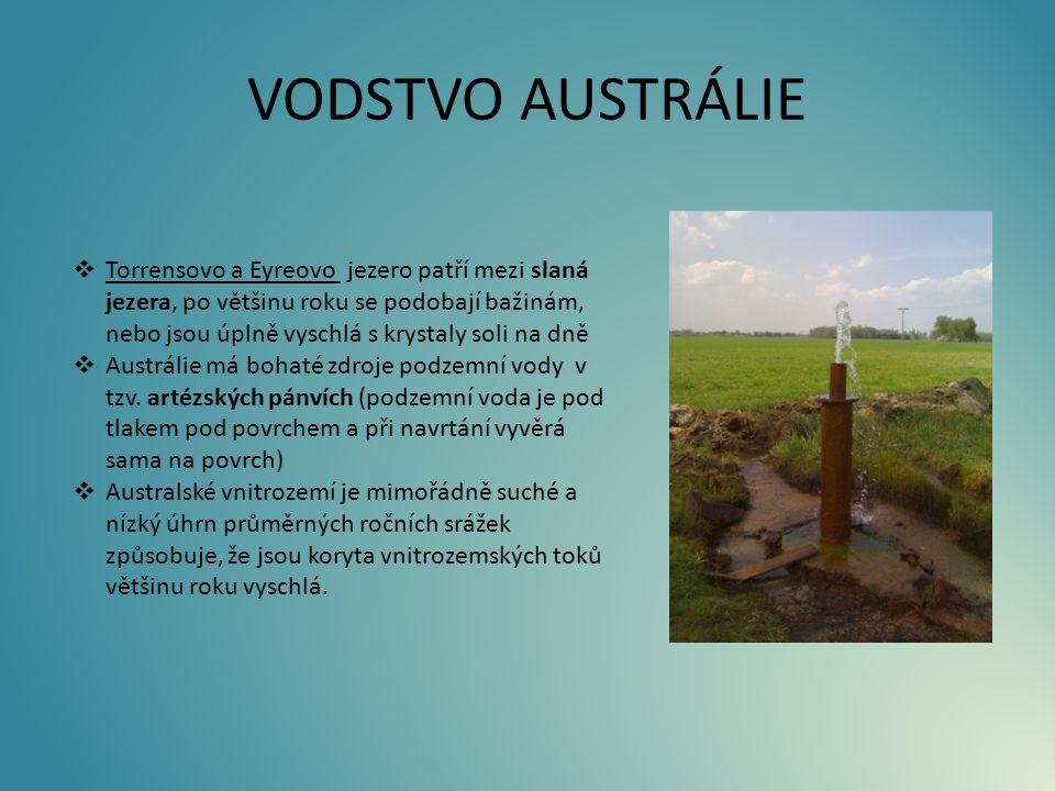 VODSTVO AUSTRÁLIE  Torrensovo a Eyreovo jezero patří mezi slaná jezera, po většinu roku se podobají bažinám, nebo jsou úplně vyschlá s krystaly soli na dně  Austrálie má bohaté zdroje podzemní vody v tzv.