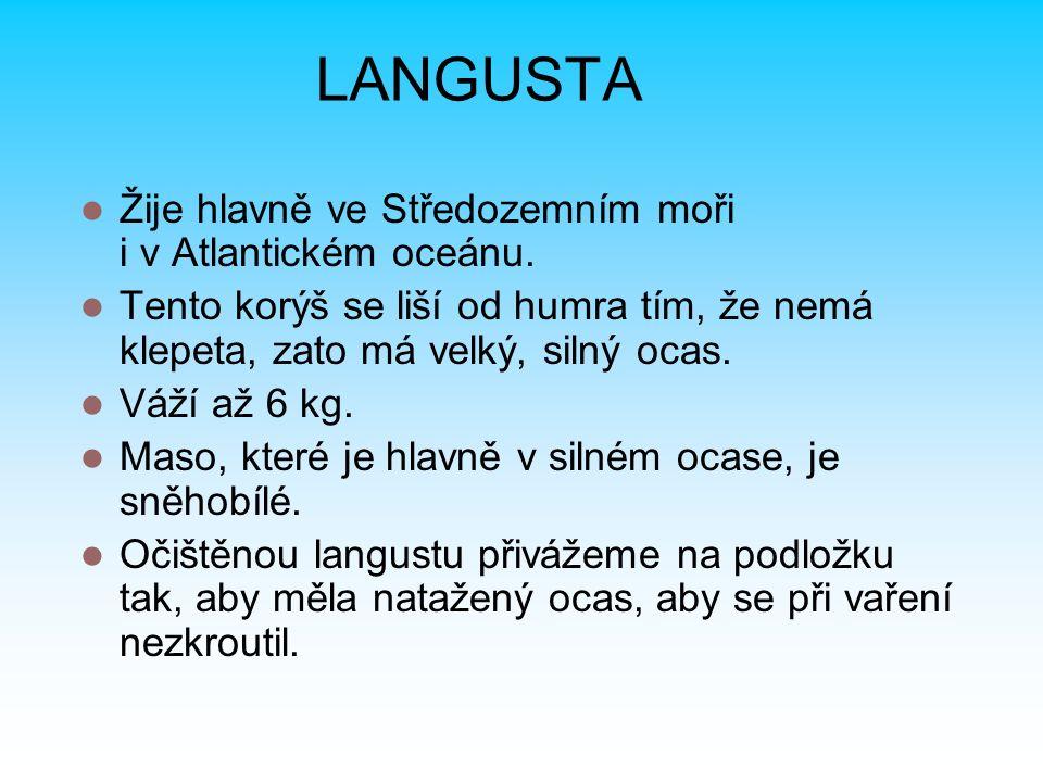 LANGUSTA Žije hlavně ve Středozemním moři i v Atlantickém oceánu. Tento korýš se liší od humra tím, že nemá klepeta, zato má velký, silný ocas. Váží a