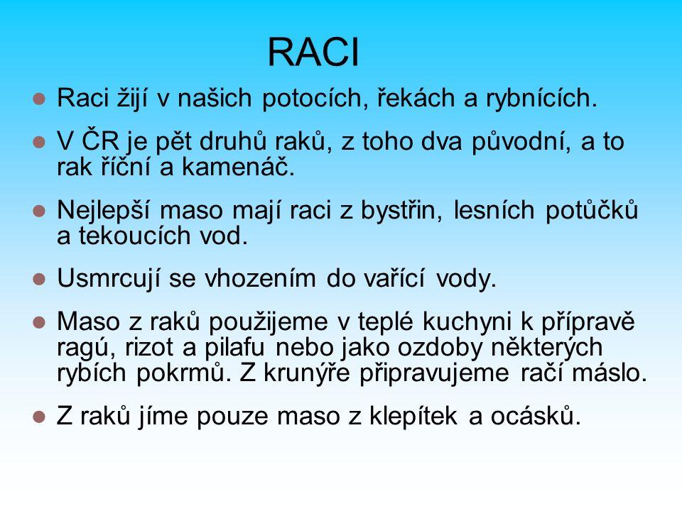 RACI Raci žijí v našich potocích, řekách a rybnících. V ČR je pět druhů raků, z toho dva původní, a to rak říční a kamenáč. Nejlepší maso mají raci z