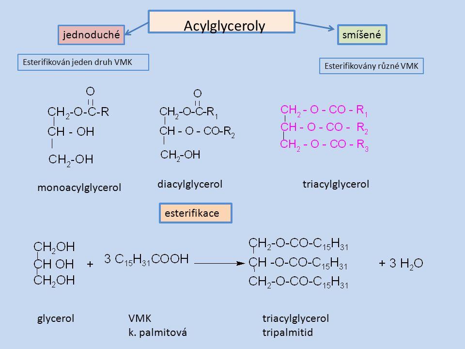 Acylglyceroly glycerolVMK k.