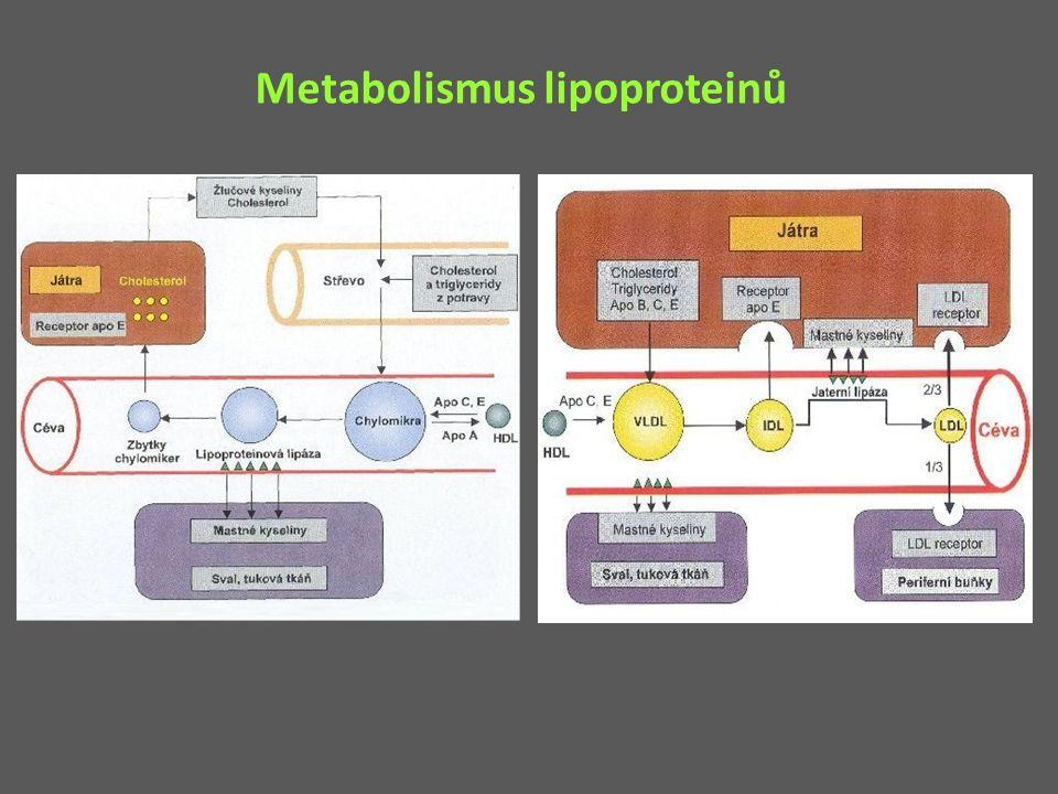 Léčiva snižující plazmatický cholesterol a – snižující intestinální (re)absorbci žlučových kyselin/cholesterolu IONTOMĚNIČE, EZETIMIB b – inhibující syntézu cholesterolu a sekreci VLDL STATINY KYSELINA NIKOTINOVÁ c – zvyšující clearence cholesterolu PROBUKOL