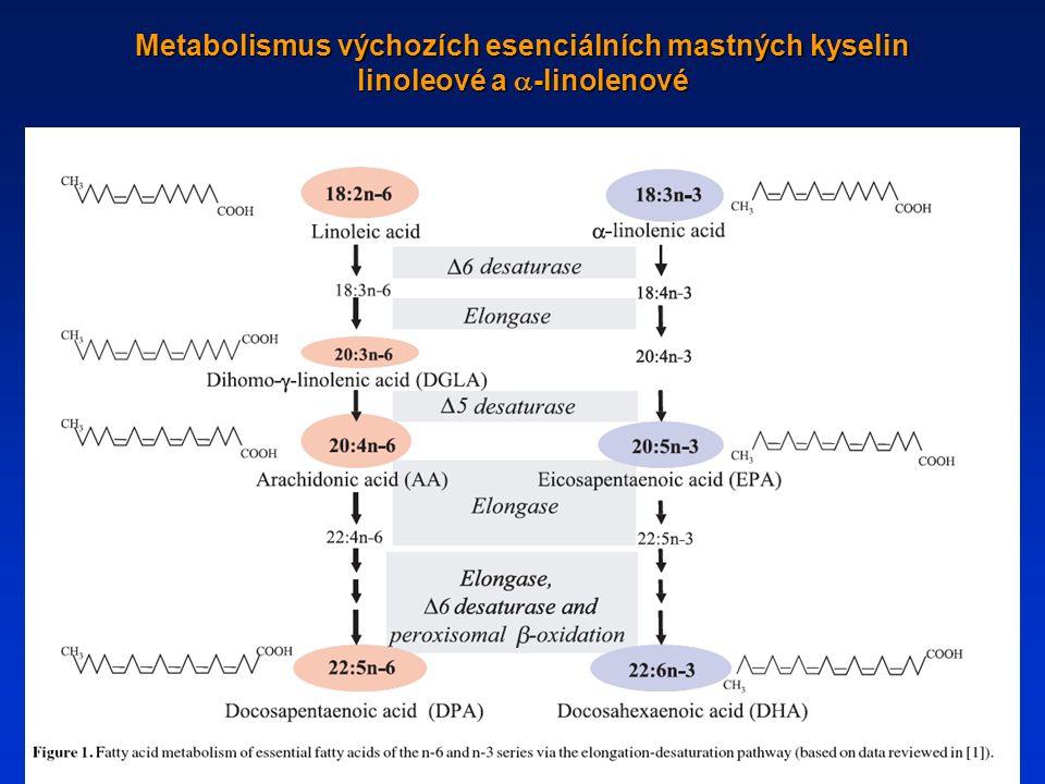 Metabolismus výchozích esenciálních mastných kyselin linoleové a  -linolenové