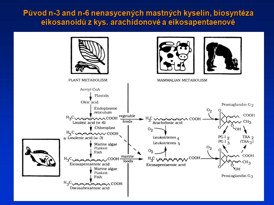 Původ n-3 and n-6 nenasycených mastných kyselin, biosyntéza eikosanoidů z kys. arachidonové a eikosapentaenové