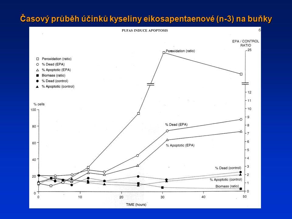 Časový průběh účinků kyseliny eikosapentaenové (n-3) na buňky