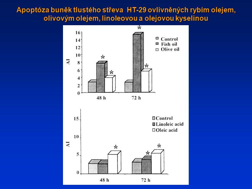Apoptóza buněk tlustého střeva HT-29 ovlivněných rybím olejem, olivovým olejem, linoleovou a olejovou kyselinou