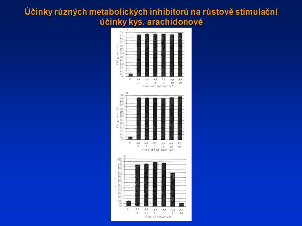 Účinky různých metabolických inhibitorů na růstově stimulační účinky kys. arachidonové