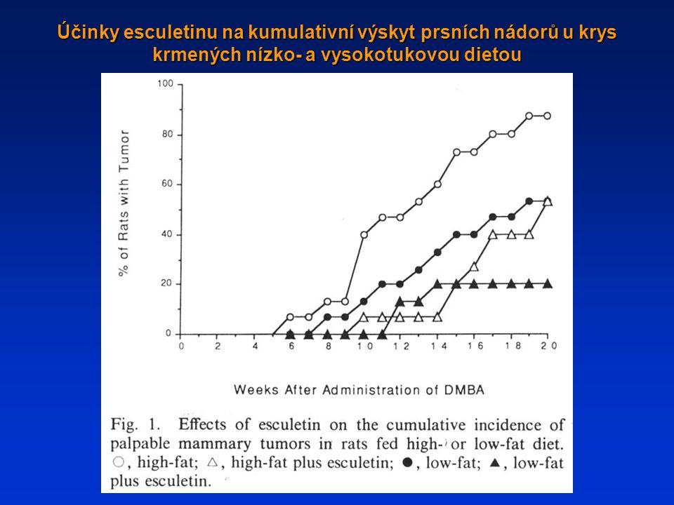 Účinky esculetinu na kumulativní výskyt prsních nádorů u krys krmených nízko- a vysokotukovou dietou