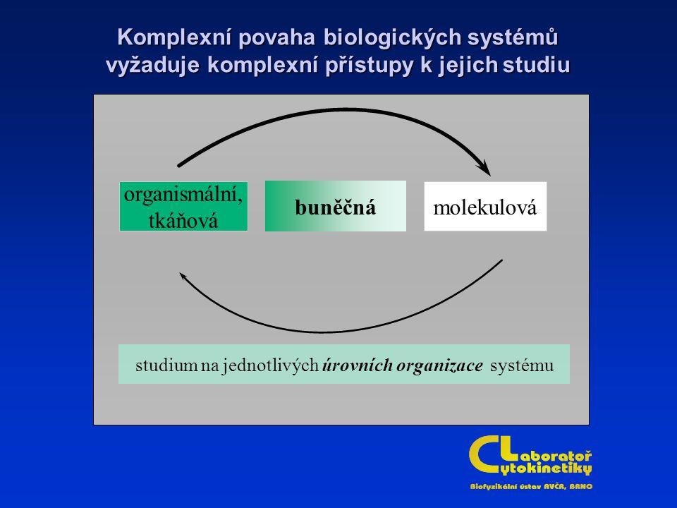organismální, tkáňová molekulovábuněčná studium na jednotlivých úrovních organizace systému Komplexní povaha biologických systémů vyžaduje komplexní přístupy k jejich studiu