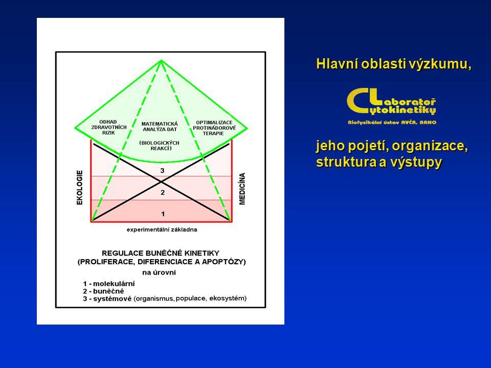 Hlavní oblasti výzkumu, jeho pojetí, organizace, struktura a výstupy