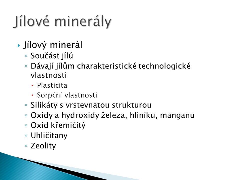  Jílový minerál ◦ Součást jílů ◦ Dávají jílům charakteristické technologické vlastnosti  Plasticita  Sorpční vlastnosti ◦ Silikáty s vrstevnatou strukturou ◦ Oxidy a hydroxidy železa, hliníku, manganu ◦ Oxid křemičitý ◦ Uhličitany ◦ Zeolity