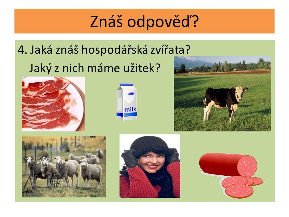 4. Jaká znáš hospodářská zvířata? Jaký z nich máme užitek? Znáš odpověď?