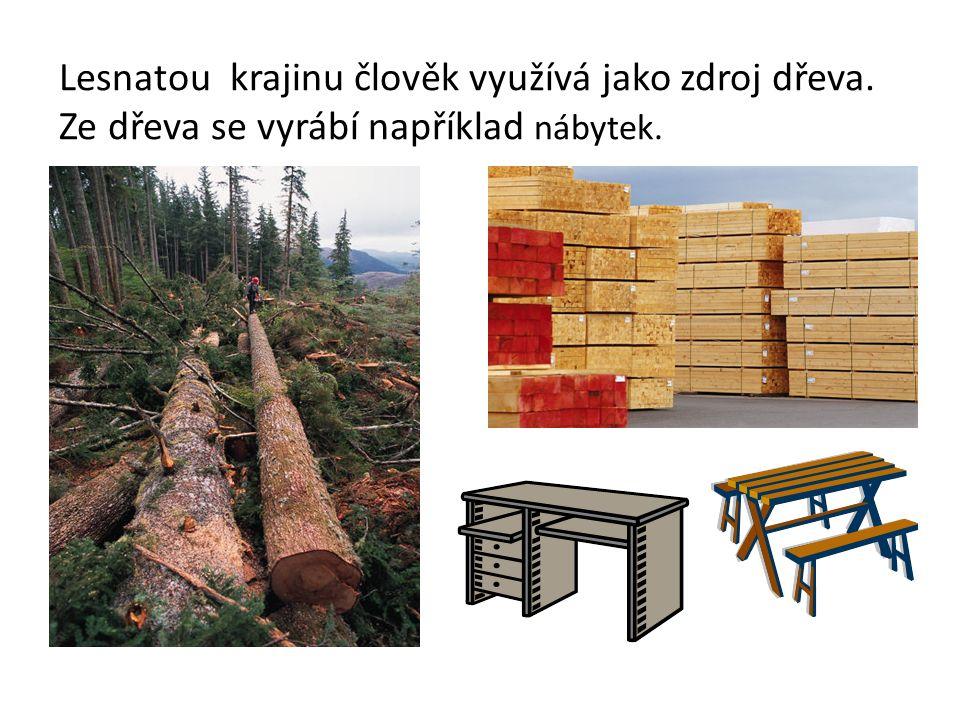 Lesnatou krajinu člověk využívá jako zdroj dřeva. Ze dřeva se vyrábí například nábytek..