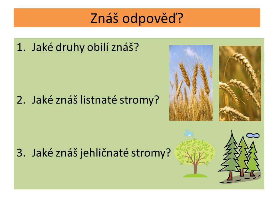 Znáš odpověď 1.Jaké druhy obilí znáš 2.Jaké znáš listnaté stromy 3.Jaké znáš jehličnaté stromy