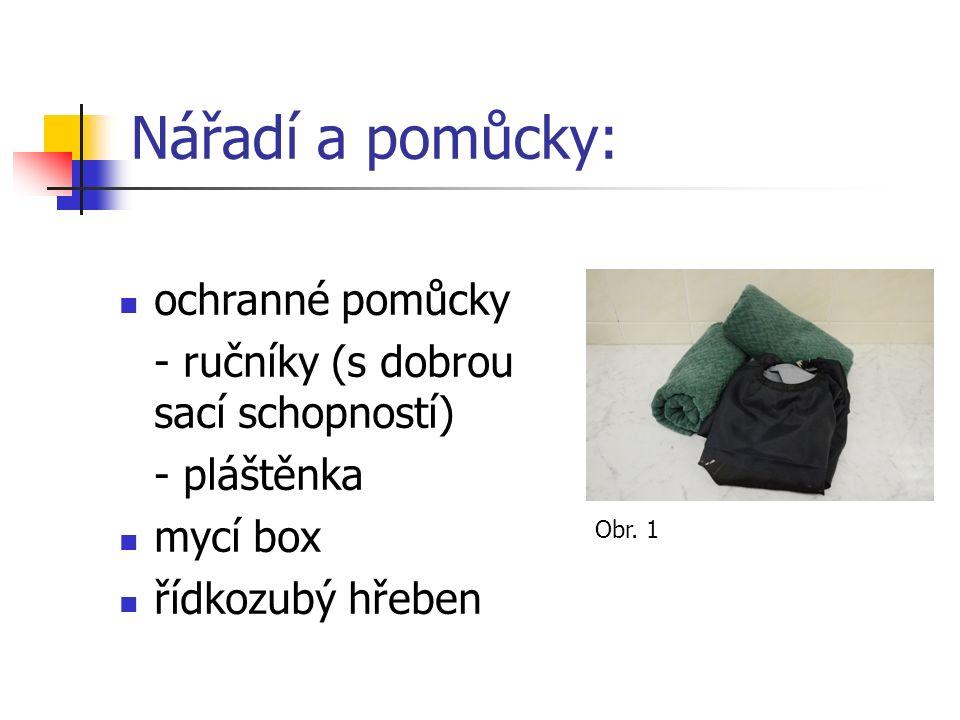 Nářadí a pomůcky: ochranné pomůcky - ručníky (s dobrou sací schopností) - pláštěnka mycí box řídkozubý hřeben Obr.