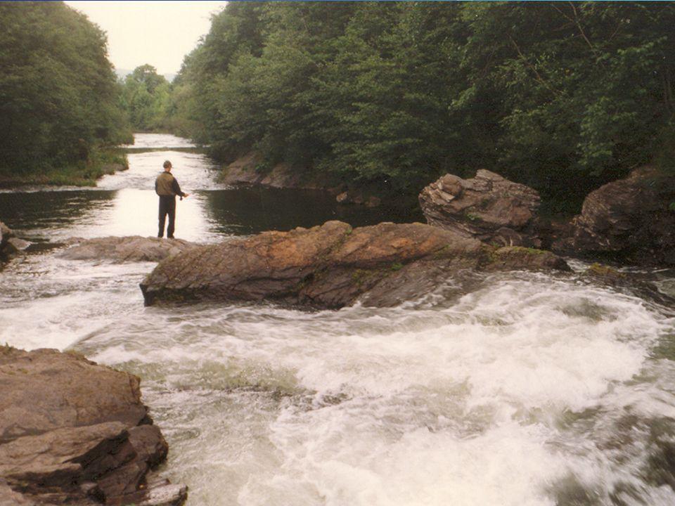 Lovíme pstruhy na řece Prut 2,75 m Naviják podle předpokládané velikosti lovených ryb Šňůra # 5 – 6 WF Návazec ujímaný, dle předpokládané velikosti lo
