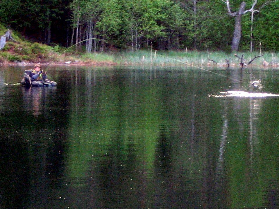 Lovíme pstruhy na jezeře Prut 2,95 m Naviják s dostatečným množstvím backingu (100 m) Šňůra # 7, více typů – F, I, S I. Návazec dle předpokládané veli