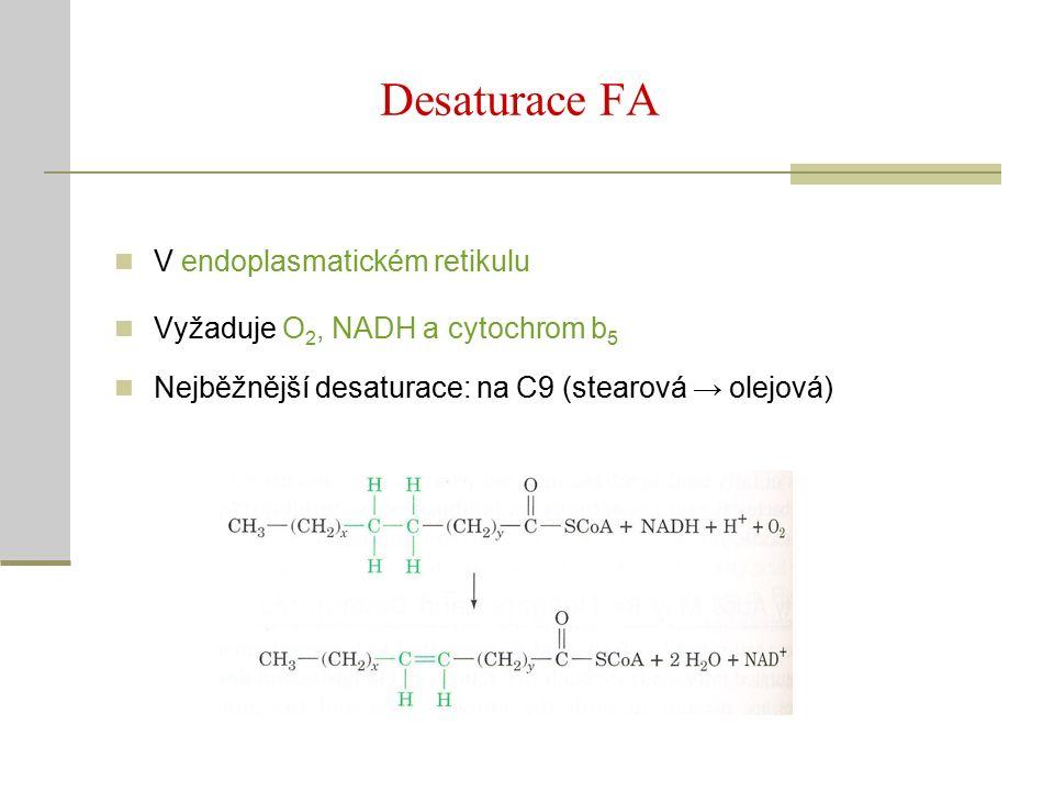 Desaturace FA V endoplasmatickém retikulu Vyžaduje O 2, NADH a cytochrom b 5 Nejběžnější desaturace: na C9 (stearová → olejová)