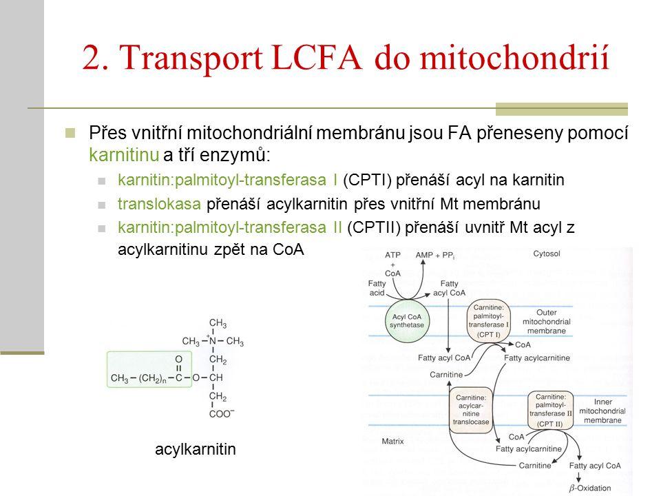 2. Transport LCFA do mitochondrií Přes vnitřní mitochondriální membránu jsou FA přeneseny pomocí karnitinu a tří enzymů: karnitin:palmitoyl-transferas