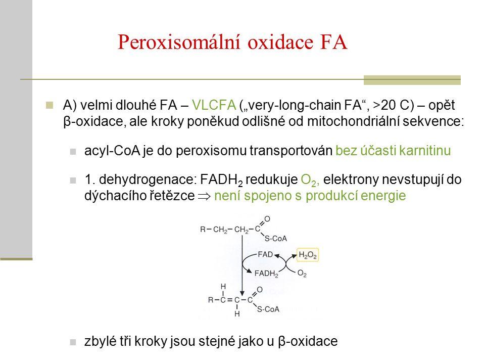 """Peroxisomální oxidace FA A) velmi dlouhé FA – VLCFA (""""very-long-chain FA , >20 C) – opět β-oxidace, ale kroky poněkud odlišné od mitochondriální sekvence: acyl-CoA je do peroxisomu transportován bez účasti karnitinu 1."""