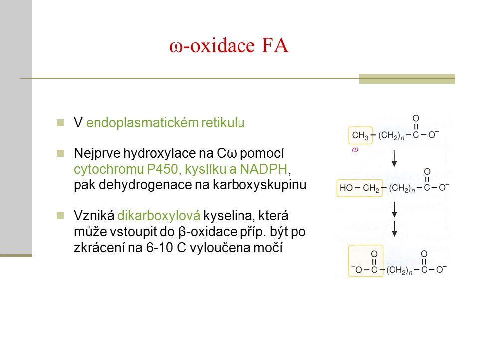 ω-oxidace FA V endoplasmatickém retikulu Nejprve hydroxylace na Cω pomocí cytochromu P450, kyslíku a NADPH, pak dehydrogenace na karboxyskupinu Vzniká dikarboxylová kyselina, která může vstoupit do β-oxidace příp.