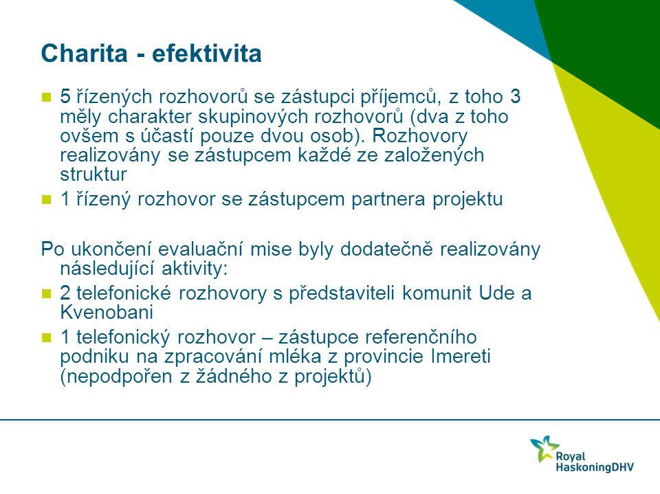 Charita - efektivita 5 řízených rozhovorů se zástupci příjemců, z toho 3 měly charakter skupinových rozhovorů (dva z toho ovšem s účastí pouze dvou osob).