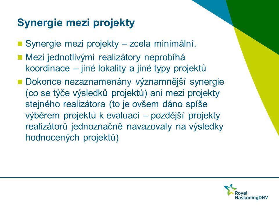 Synergie mezi projekty Synergie mezi projekty – zcela minimální.
