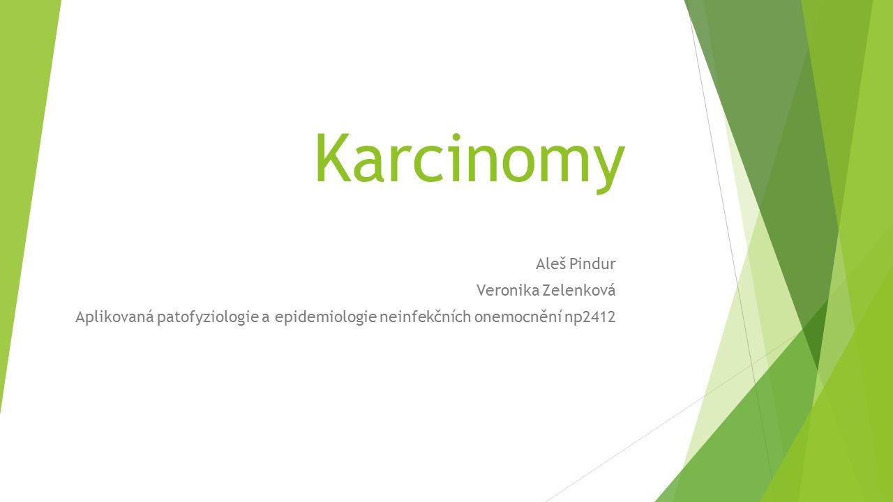 Karcinomy Aleš Pindur Veronika Zelenková Aplikovaná patofyziologie a epidemiologie neinfekčních onemocnění np2412