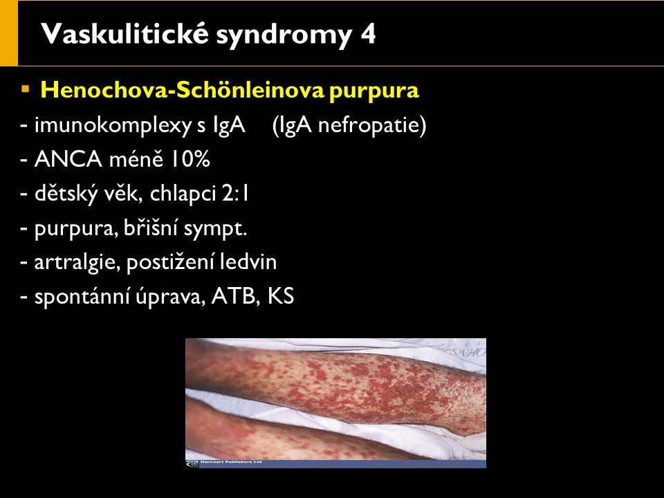 Vaskulitick é syndromy 4  Henochova-Schönleinova purpura - imunokomplexy s IgA (IgA nefropatie) - ANCA méně 10% - dětský věk, chlapci 2:1 - purpura, břišní sympt.